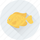 decor, fish, fish aquarium, fish tank, goldfish icon