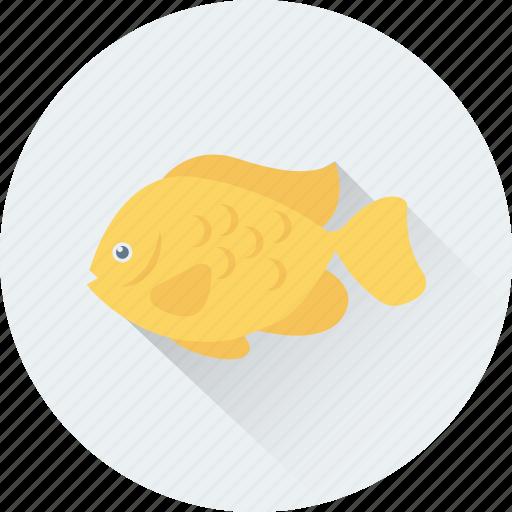 decor, fish, fish aquarium, fish tank, goldfish icon