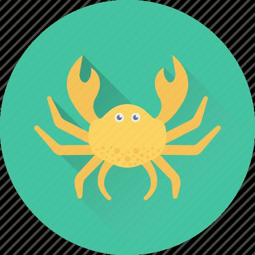 animal, crab, food, lobster, seafood icon