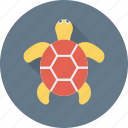 animal, reptile, terrapin, tortoise, turtle icon
