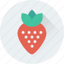 diet, food, fruit, organic, strawberry icon