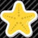 animal, fish, sea star, seafood, starfish
