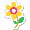 blossom, daisy, floral, nature, sunflower icon
