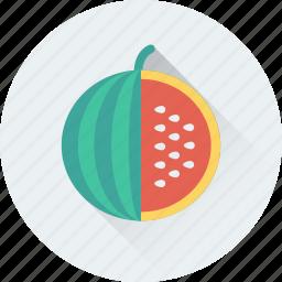 food, nutrition, pumpkin, squash plant, vegetable icon