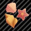 beach, beach decoration, holiday, sea, seashell, summer, tropical