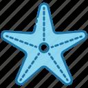 starfish, sea, animal, ocean, fish, beach