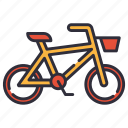bicycle, bike, sport