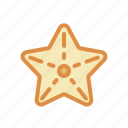 animal, sea star, underwater icon