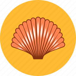 conch, food, scallop, sea, seafood, shell, summer icon
