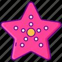 beach, sea, star, starfish