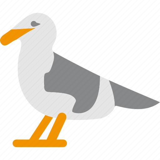 Animal, beach, bird, nature, seagull icon - Download on Iconfinder