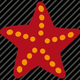 animal, ocean, sea, seastar, star icon