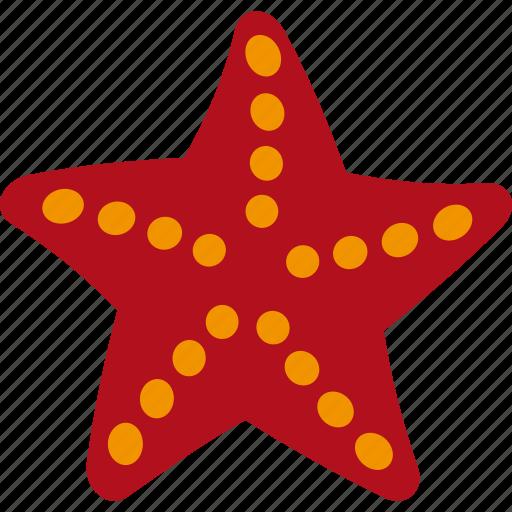 Animal, ocean, sea, seastar, star icon - Download on Iconfinder
