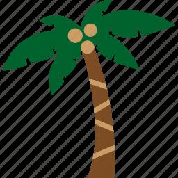 beach, coconut, nature, palm, plant, tree icon