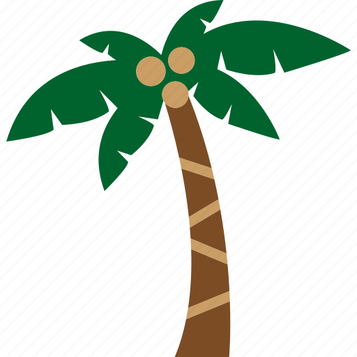 Beach, coconut, nature, palm, plant, tree icon - Download on Iconfinder