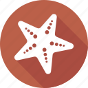 animal, beach, star, starfish icon