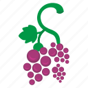 food, fruit, grape, wine icon