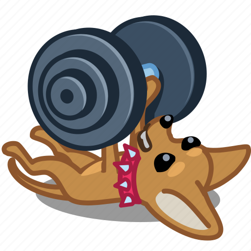 dog, fitness, gym, pet, puppy, sport, strong icon