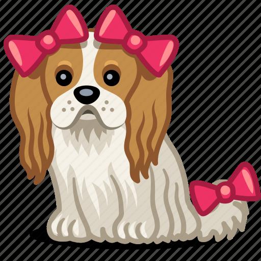 animal, bow, cute, dog, girl, pet, smart icon