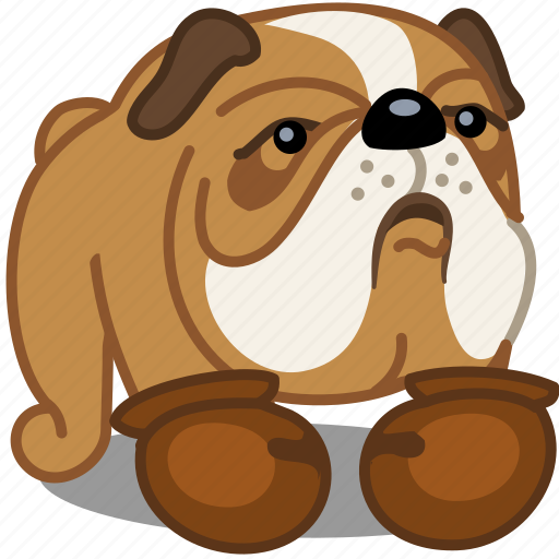 box, bulldog, dog, fight, pet, sport icon