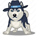 animal, cool, dog, haski, hat, mafia, pet icon