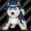 animal, cool, dog, haski, hat, mafia, pet icon