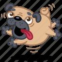 dog, jump, puppy, happy, pet