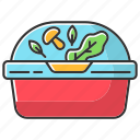 color, container, lunchbox, plastic, salad, takeaway, takeout icon