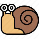 coiled shell, gastropod, patience, slow, snail icon