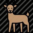christmas, deer, reindeer, sled, winter, xmas