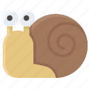 thanksgiving, coiled shell, gastropod, patience, slow, snail icon