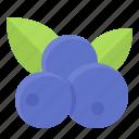 blueberry, dessert, fruit, menu, sweet icon
