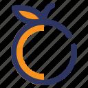 autumn, farm, food, fruit, orange, thanksgiving icon