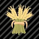 flour, plant, harvest, grain