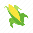corn, corn cob, corn stalk, wild corn icon
