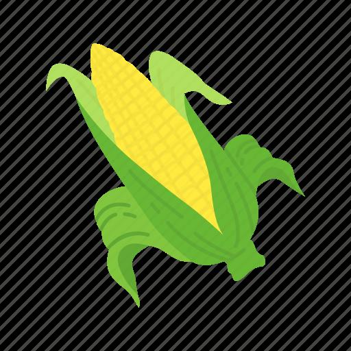 corn, corn cob, corn stalk, wild corn icon