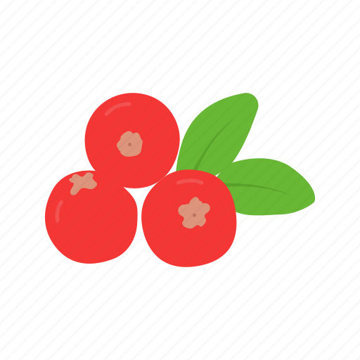 berries, cranberries, fruit, red berries icon