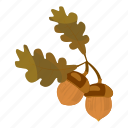 acorn, autumn, branch, brown, cartoon, harvest, harvesting icon