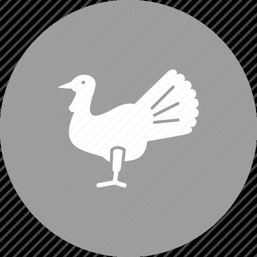 food, meat, roast, roasted chicken, roasted turkey, turkey icon