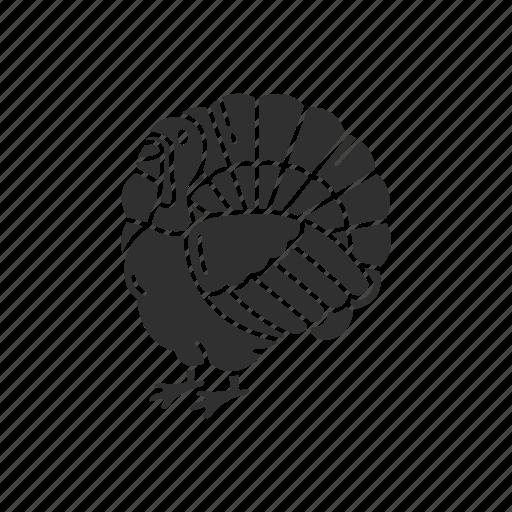 bird, chicken, turkey, wild turkey icon