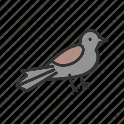 beautiful, bird, card, cute, pretty, sparrow, thanksgiving icon