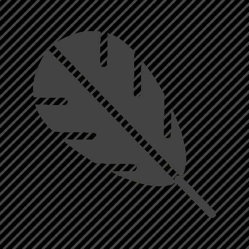 bird, decorative, drawn, feather, graphic, hand, set icon
