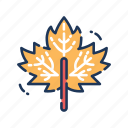 autumn, leaf, leaves, maple, thanksgiving icon