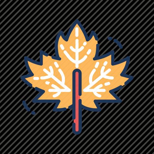 autumn, leaf, leaves, maple, thanksgiving icon
