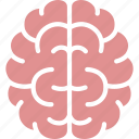 brain, brainstorm, intelligence, intelligent, mind, organ, smart icon