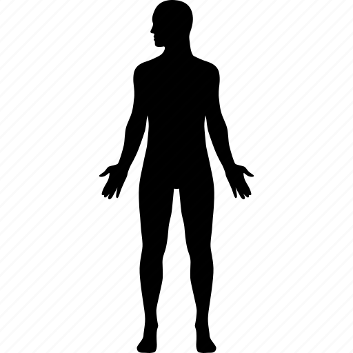 anotomy, body, diagram, human, male, man, side icon