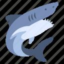 ancient, animal, deep, dinosaur, jurassic, ocean, shark icon