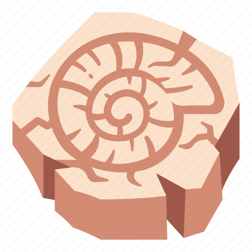 fossil, old, rock, shell, snail, spiral, stone icon