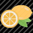 aroma product, aromatherapy, citrus flavour, essence, lemon icon