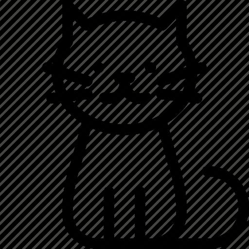 cat, pet icon